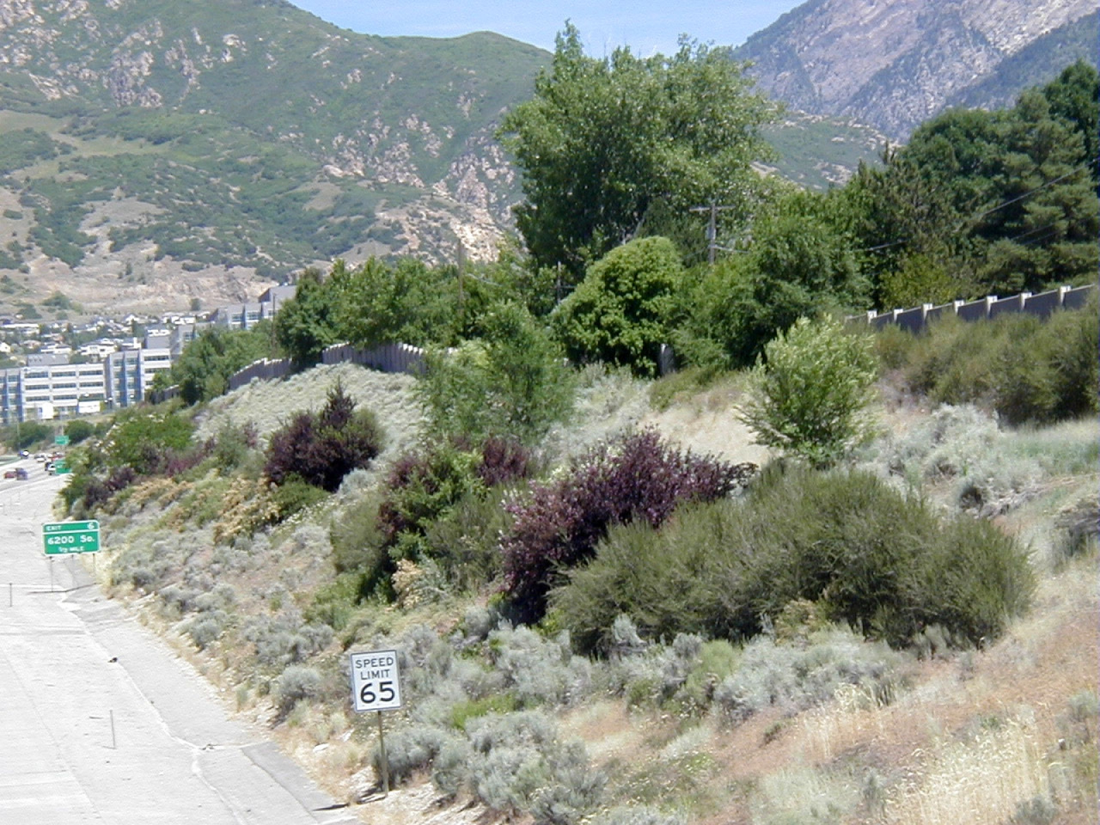 I-215 Landscape Design & Implementation